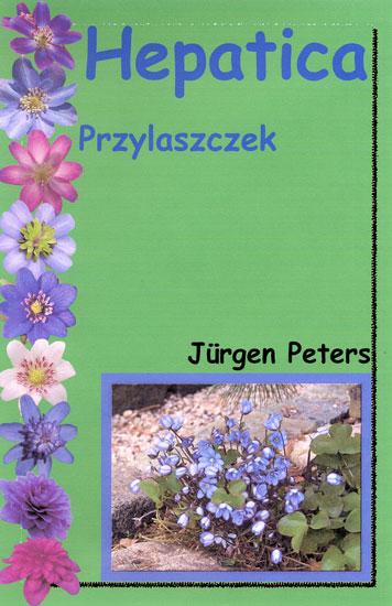 Info polnisch-0