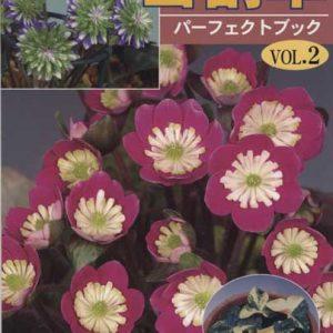 Buch Hepatica-Leberblümchen-Japanisch-Vol. 2-0