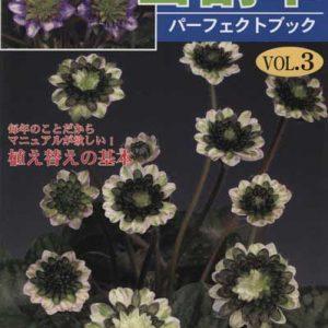 Buch Hepatica-Leberblümchen-Japanisch-Vol. 3-0