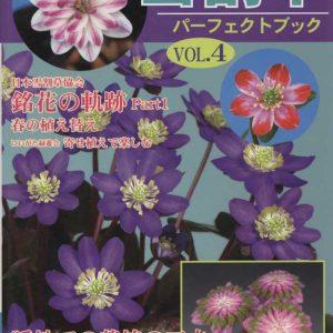 Buch Hepatica-Leberblümchen-Japanisch-Vol. 4-0