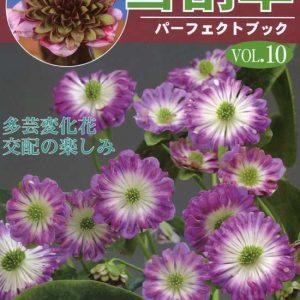 Buch Hepatica-Leberblümchen-Japanisch-Vol. 10-0