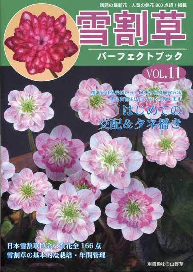 Buch Hepatica-Leberblümchen-Japanisch-Vol. 11-0