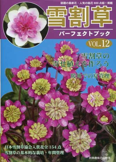 Buch Hepatica-Leberblümchen-Japanisch-Vol. 12-0