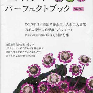 Buch Hepatica-Leberblümchen-Japanisch-Vol. 13